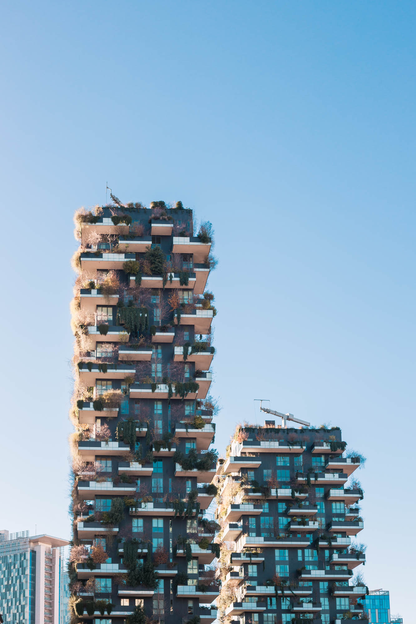Bosco Verticale Milano | Dnilva