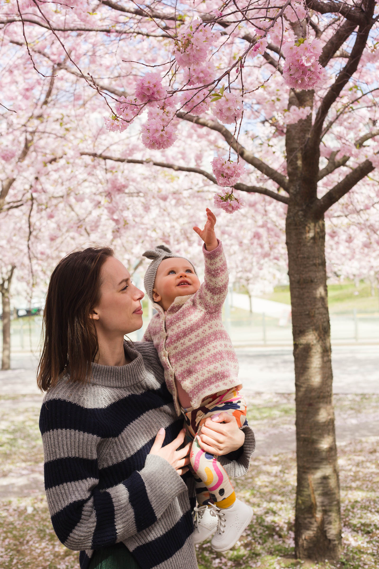 Anna María och Edda - Körsbärsträd