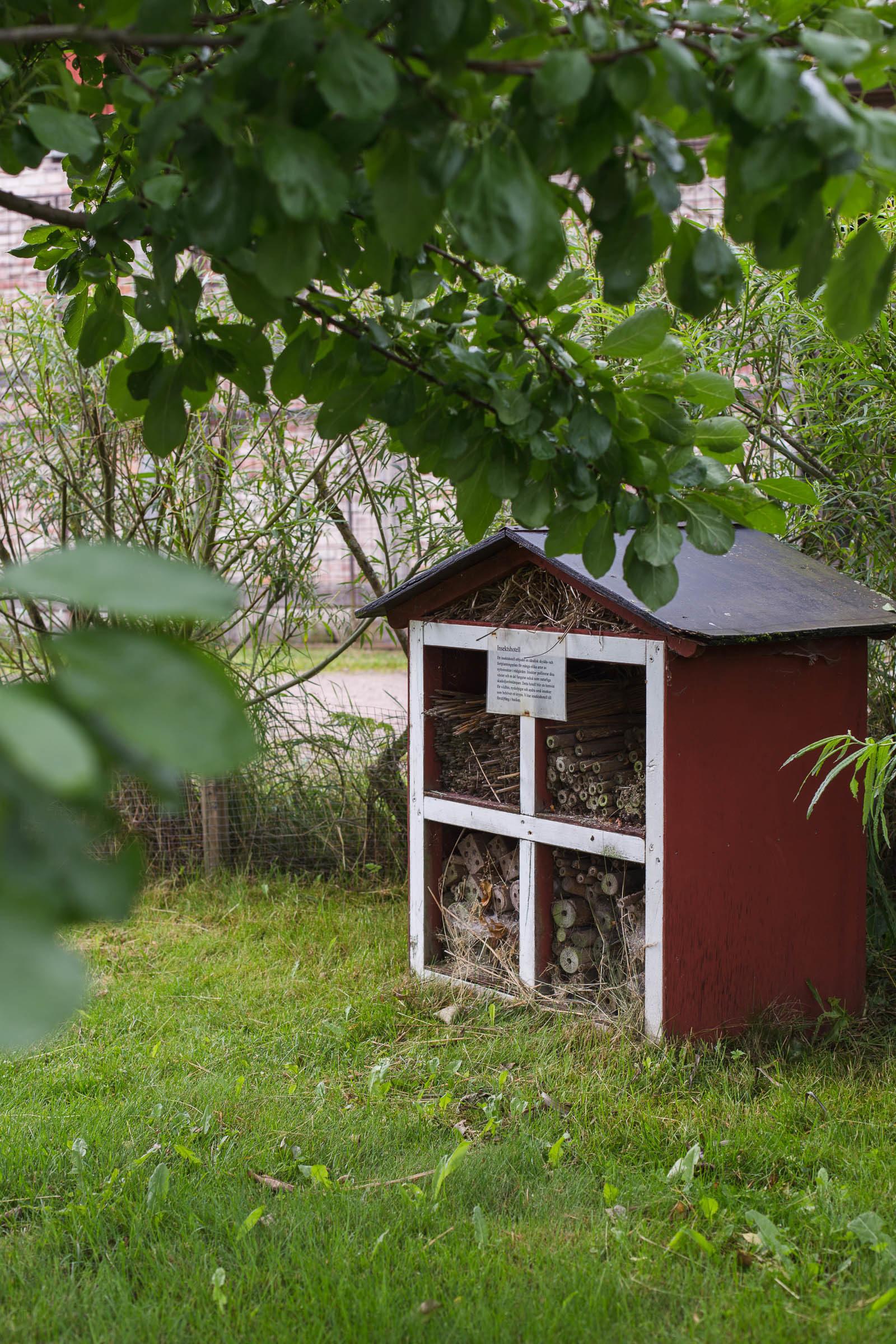 Insektshotell - Olofstorps djur & trädgård