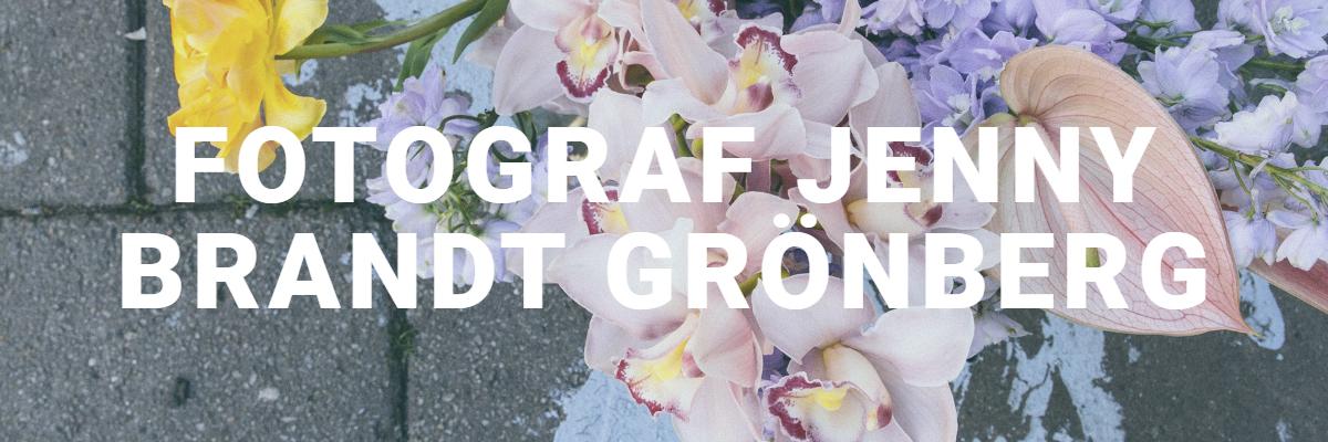 Jenny Brandt Grönberg