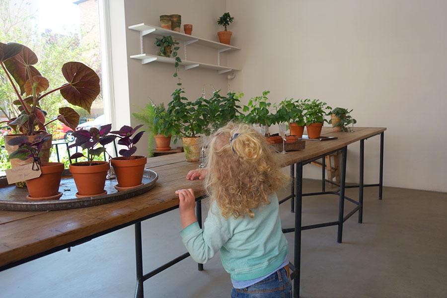 köpa terrarium malmö