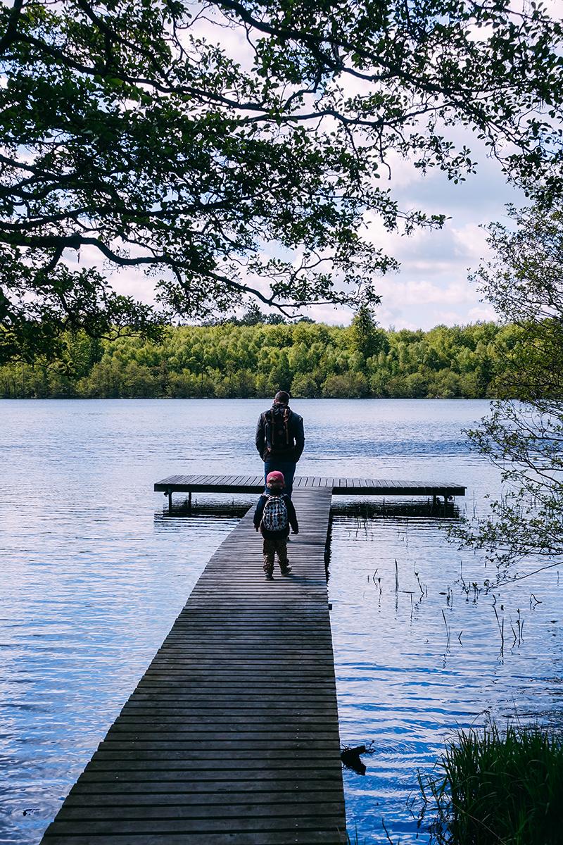 Utflykt nära Malmö: Eksholmssjö
