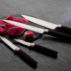 Emsan Masterpiece 4lü Bıçak Seti