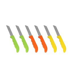 Apricot Norinco 6'lı Meyve Bıçak Seti Ht201706
