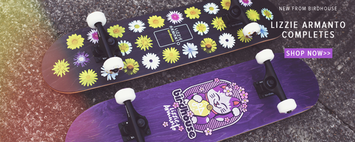 Birdhouse skateboards  lizzie armanto complete