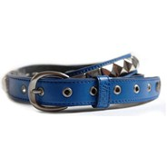 Single Electric Blue/Silver Belt