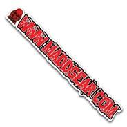 Madd Gear www.maddgear.com sticker