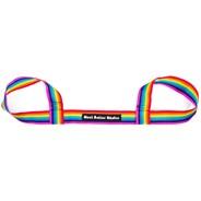 Skate Leash Carry Strap - Rainbow