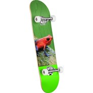 Poison Tree Frog #243 Birch 8.25inch Complete Skateboard - Multi