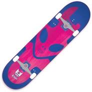 Exp Blue 8inch Complete Skateboard