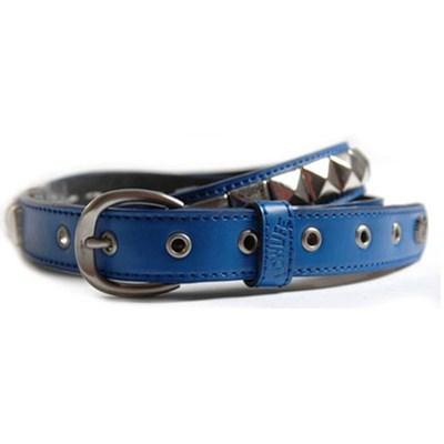 Single Electric Blue/Silver Belt