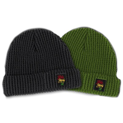 Roll Up Logo Beanie