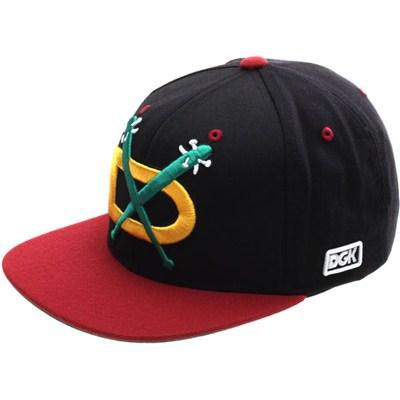Night Hawks Snapback Cap - Black/Cardinal