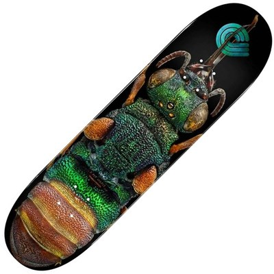 Peralta LB Ruby Tailed Wasp #244 8.5inch Skateboard Deck