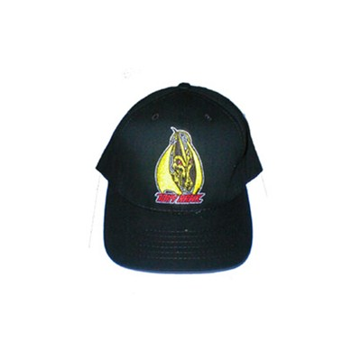 Hawk Pterodactyl flexfit cap