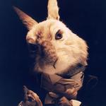 Thumbsq_original_rabbit
