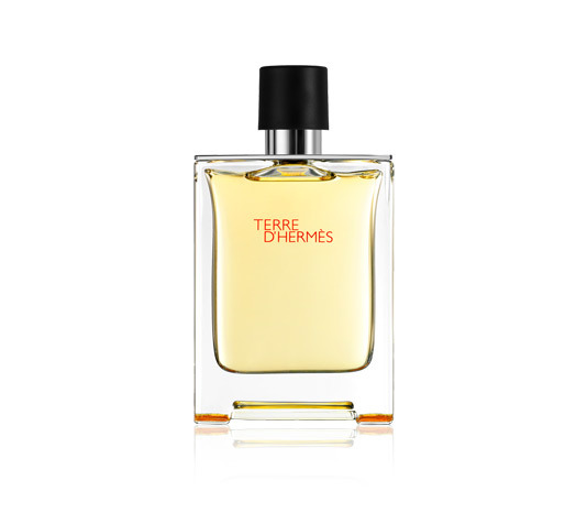 Terre d hermes for men 100ml