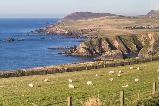Private 3 Day Ring of Kerry Tour