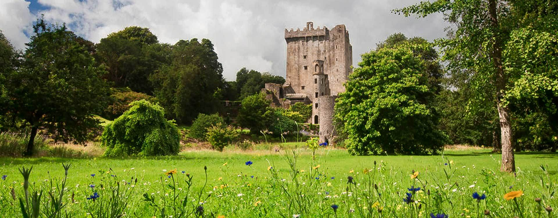 Cork, Blarney Castle & Rock of Cashel Day Tour from Dublin