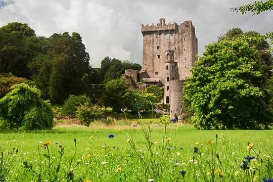 Cork, Blarney Castle & Rock of Cashel Day Tour from Dublin