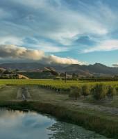 Image of Omaka Springs Estates