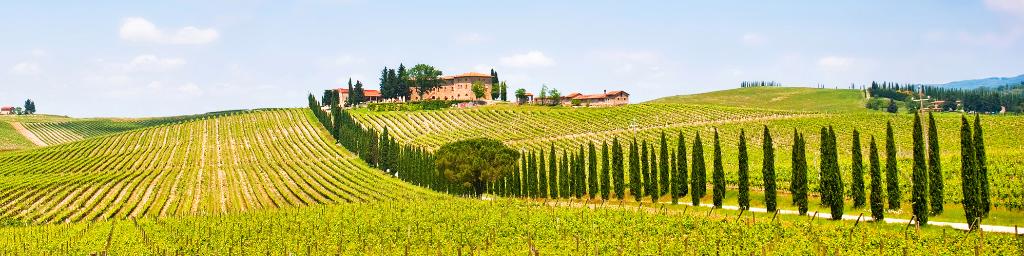 Chianti  Tuscany Tour 😍 🍷