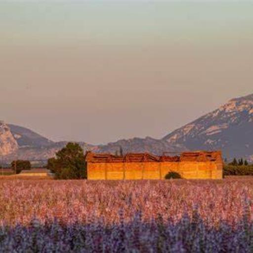 Alpes-de-Haute-Provence (🇫🇷)