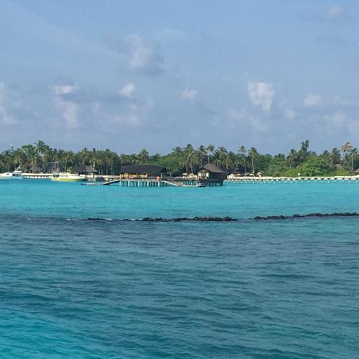 Island/BeachRunning