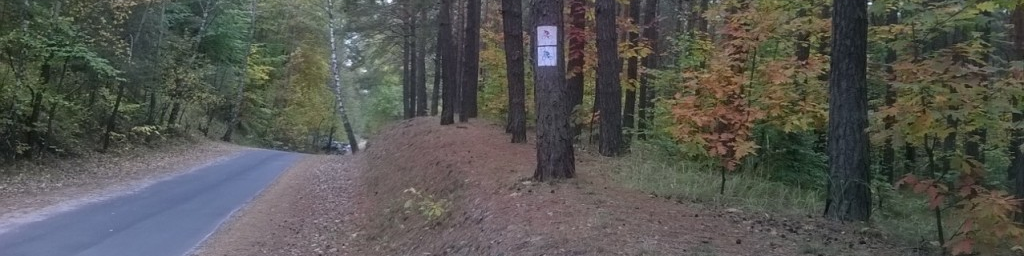 MTB and GRAVEL rides (Kielce and Augustów, Poland)