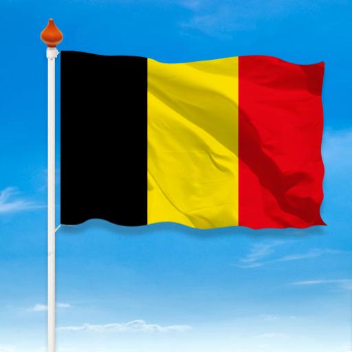 2020 video's Belgium