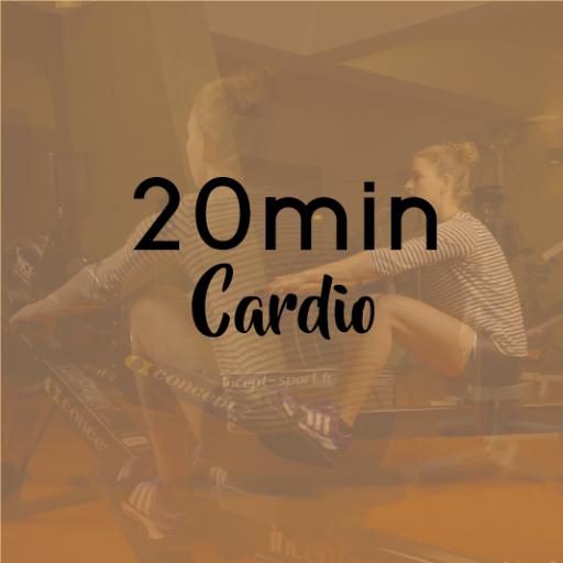 20min CARDIO