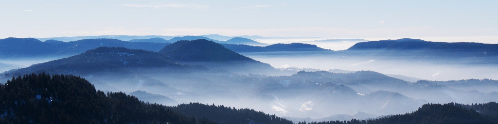 🌲 Northern Black Forest