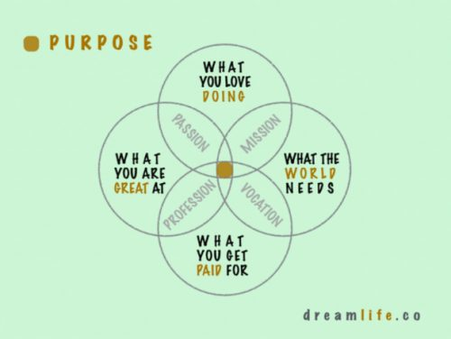 How Purpose Motivates our Approach to Data