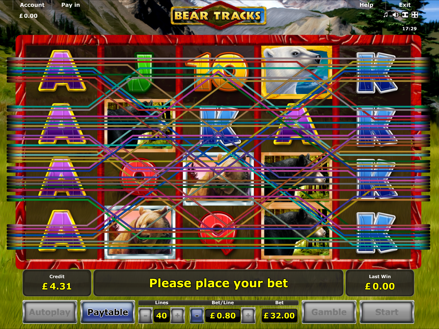 play Bear Tracks online
