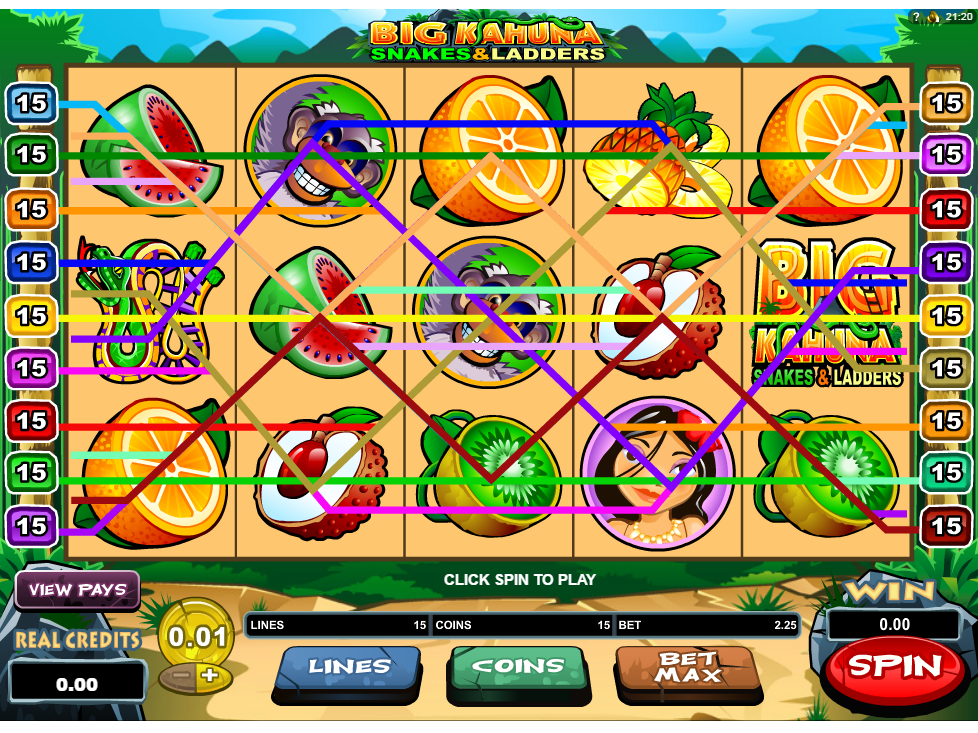 Jetzt Big Kahuna: Snakes and Ladders online spielen