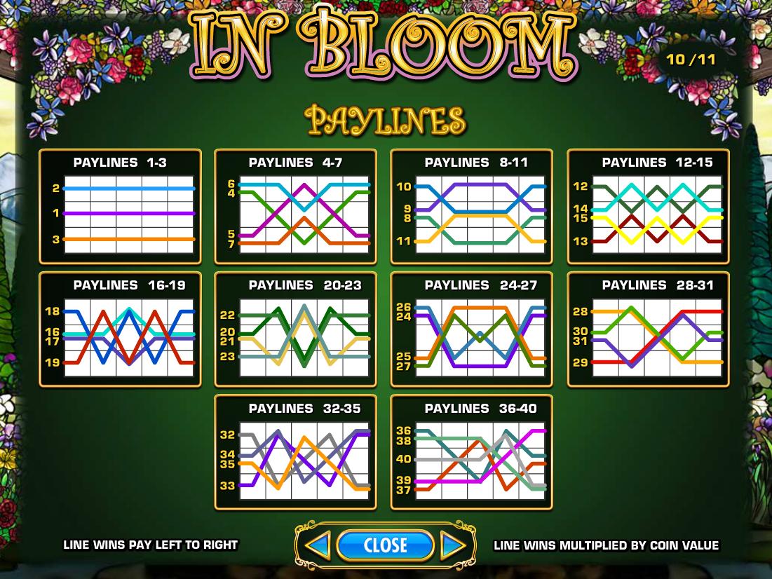 play In Bloom online