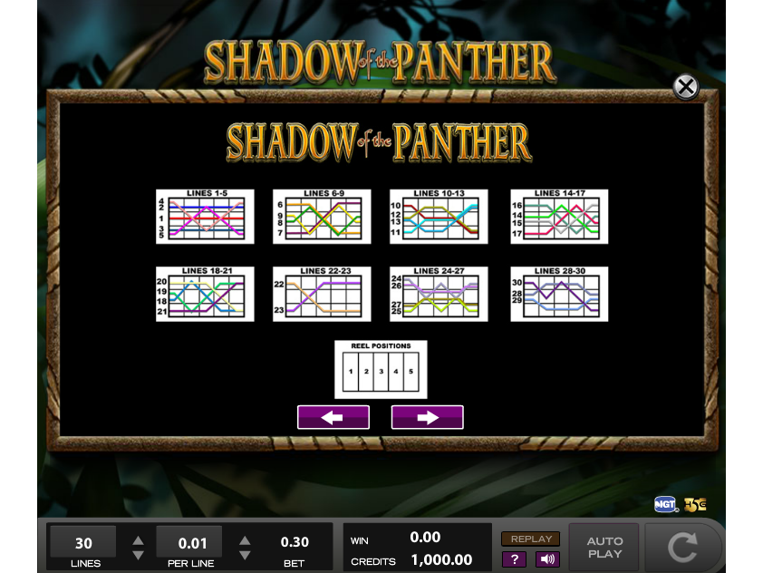 play Shadow of the Panther online