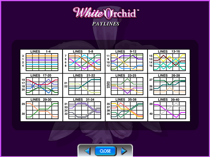 play White Orchid online