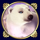 play Arctic Treasure for real money