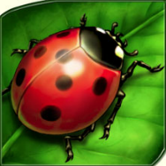 play Lucky Lady's Charm Deluxe for real money