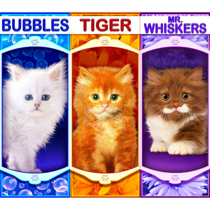 play OMG! Kittens for real money
