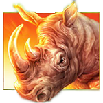 play Raging Rhino for real money