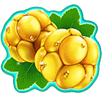 play Winterberries for real money