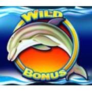 Spiele Dolphin Gold kostenlos