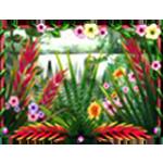 Spiele Rainforest Dream kostenlos