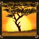 play Safari Heat for free