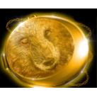 Spiele Wolfheart kostenlos