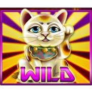 vind rigtige penge på Astro Cat