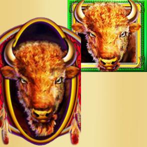 Spannende Zeiten mit Buffalo Spirit