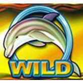 Spiele jetzt am Dolphin Gold Automaten